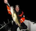 Fångstrapporter 2012