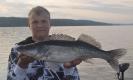 Fångstrapporter 2013
