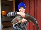 Fångstrapporter 2014