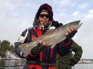 Fångstrapporter 2016